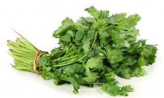 How to Preserve Fresh Cilantro (Coriander, Chinese Parsley)