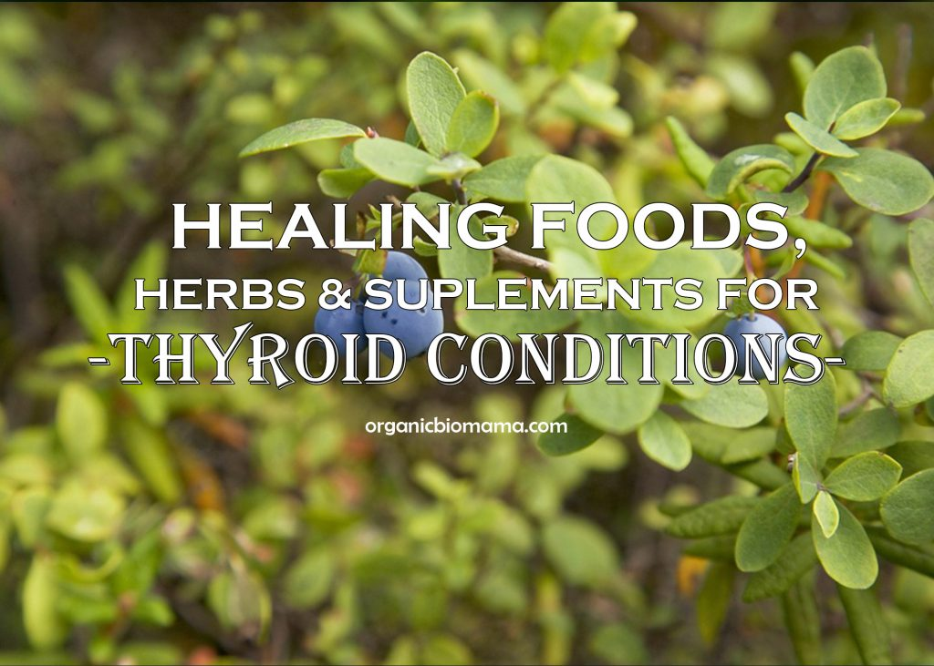 Healing Foods Herbs Supplements for Thyroid problems