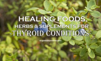 Most Healing Foods, Herbs, and Supplements for Thyroid problems