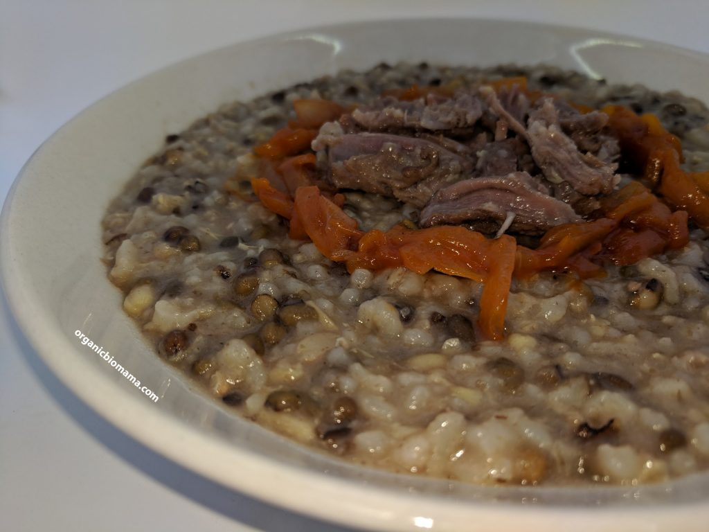 sprouted mung bean porridge with rice and meat 1