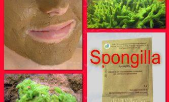 Natural Treatment for Acne Scars – SPONGILLA POWDER RESURFACING TREATMENT At Home
