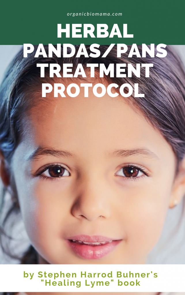 herbal pandas treatment protocol
