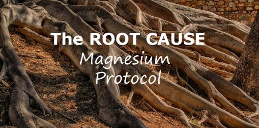 The Root Cause Protocol by Morley Robbins (Magnesium Protocol)