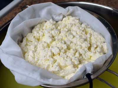 soft cottage cheese - how to make soft cottage cheese at home